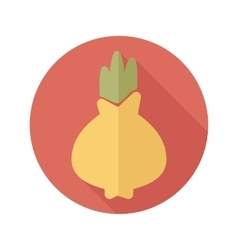 Onion flat icon with long shadow vector