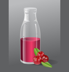 Cranberry juice vector