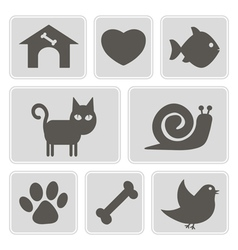 monochrome icons with pets vector image