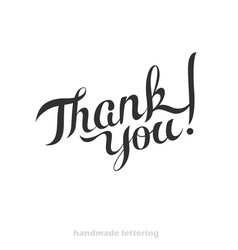 thank you - hand lettering vector image
