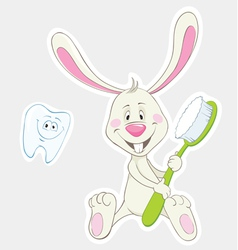 Bunny with toothbrush vector