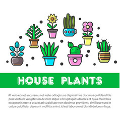 house plants in flower pots decoration flat vector image vector image