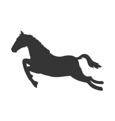 Horse ride animal vector