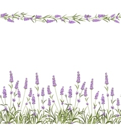 The lavender seamless frame line vector