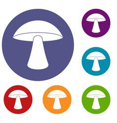 Birch mushroom icons set vector