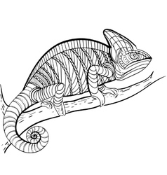 Coloring book Coloring for adult vector image