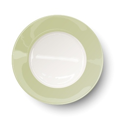 Empty light olive green plate with reflections vector image vector image