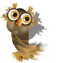 owl on white vector image vector image