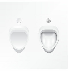 urinal and flush valve vector image