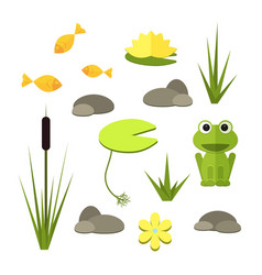 Cartoon garden pond elements with water vector