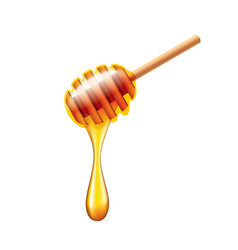 Honey stick with flowing honey isolated vector image vector image