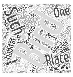 California a haven for bird watching word cloud vector