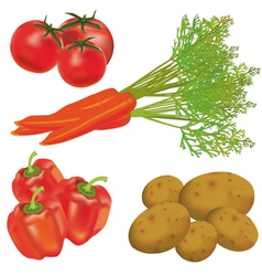 Set of realistic vegetables vector image