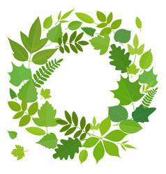 Wreath of green leaves vector