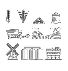 agriculture for growing cereals wheat rye vector image