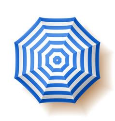 beach umbrella top view vector image vector image