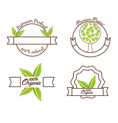 Food organic product natural premium label vector