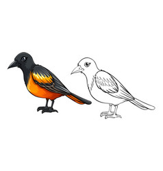 doodle animal for bird vector image vector image