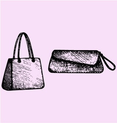 Womens handbags clutch bag vector