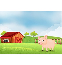 A pig in the farm with barn vector