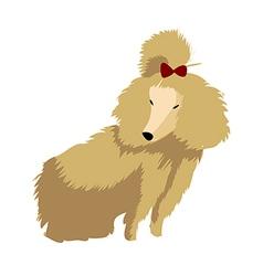 A poodle vector