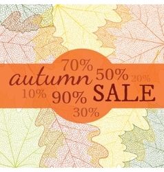 Autumn sale banner with discount vector