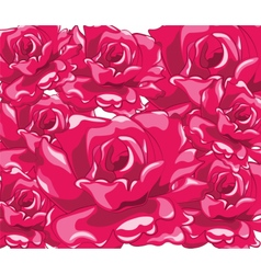 Beautiful bright roses vector