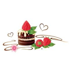 chocolate raspberry vector image