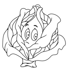 Fresh cabbage cartoon vector
