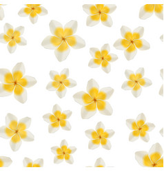 white and yellow plumeria flowers on green vector image vector image