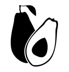 Avocado fruit image vector