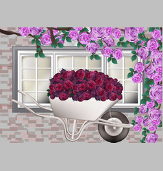 Beautiful roses provence style background vector