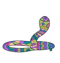 Colorful snake vector image vector image