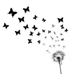 Dandelion seeds transforming into butterflies vector image