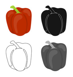 pepper icon cartoon singe vegetables icon from vector image