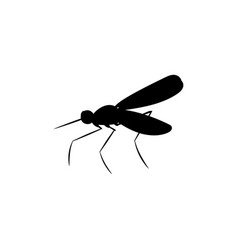Mosquito insect black silhouette animal vector