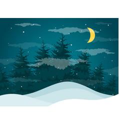 night in woods vector image vector image