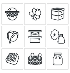 Set of apiary icons beekeeper bee hive vector