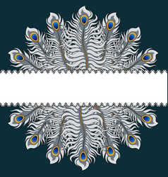 Postcard with silver peacock feathers and ribbon vector