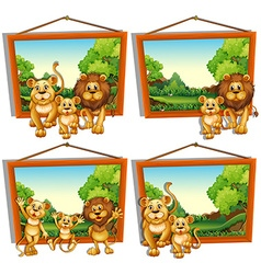 Four photo frames of lion family vector