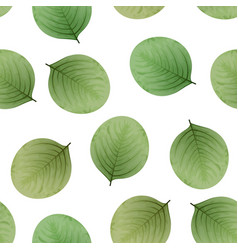 seamless leaves pattern eco background vector image