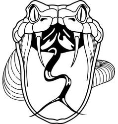 Tg00041 rattlesnake02 vector