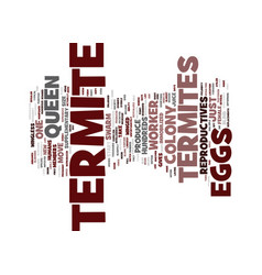 Termite eggs text background word cloud concept vector