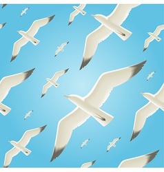 Seamless background with seagulls vector