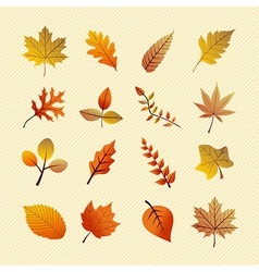 Vintage autumn season tree leaves set eps10 file vector