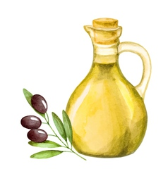 Olive oil in the bottle and a branch of olive wate vector image