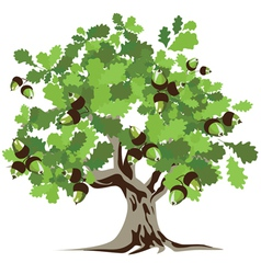 Big green oak tree vector