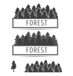 Logo or emblem of fir-trees vector