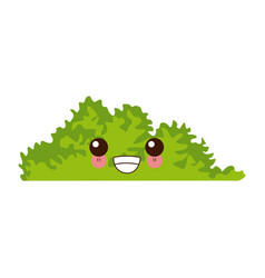 bush cute cartoon vector image