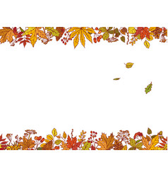 colourful outline background sketch autumn vector image
